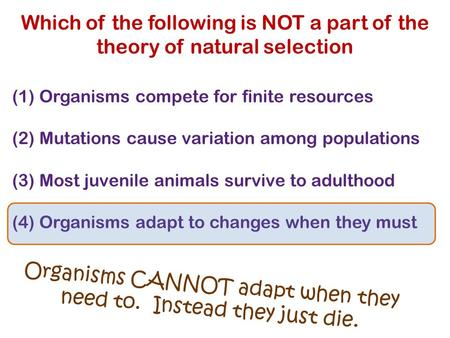 How Do Mutations And Variation Cause Natural Selection