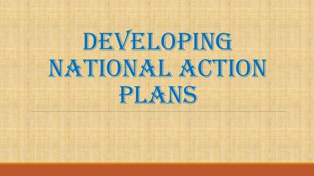 DEVELOPING NATIONAL ACTION PLANS. Two main components 1) Plan to implement the AGDI 2) Plan to use the AGDI report to influence national development strategies.