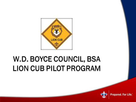 W.D. Boyce Council, BSA Lion Cub Pilot Program