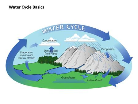 Water Cycle Basics. What is a Watershed? An area of land that drains all of the streams and rainfall to a common outlet such as a river or bay.
