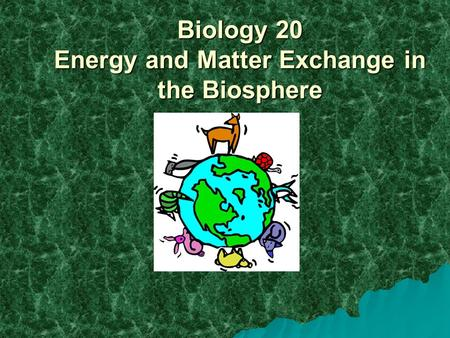 Biology 20 Energy and Matter Exchange in the Biosphere.