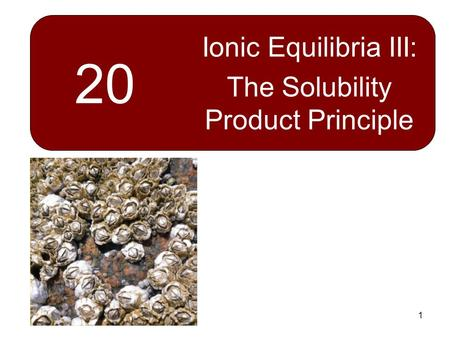 1 20 Ionic Equilibria III: The Solubility Product Principle.