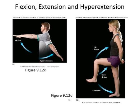 9-1 Flexion, Extension and Hyperextension Figure 9.12c Figure 9.12d Copyright © The McGraw-Hill Companies, Inc. Permission required for reproduction or.