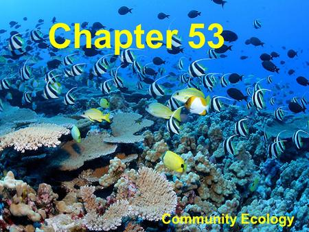 Chapter 53 Community Ecology. What is a Community? A biological community is an group of populations living close enough for interaction Animals and plants.