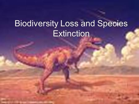 Biodiversity Loss and Species Extinction. Extinction vs. Extirpation Extinction occurs when the last member of a species dies and the species ceases to.
