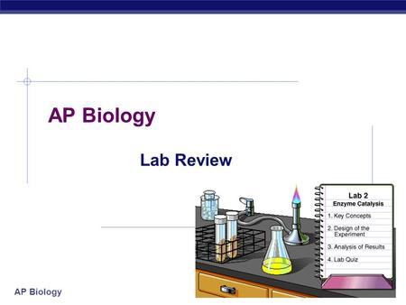 AP Biology Lab Review AP Biology Lab 1: Enzyme Activity  Concepts:  Enzyme  Structure (active site, allosteric site)  Lower activation energy, speed.