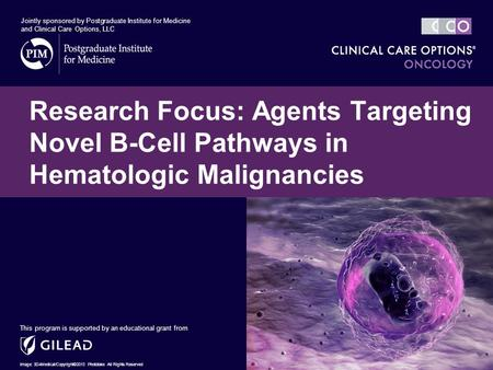 Research Focus: Agents Targeting Novel B-Cell Pathways in Hematologic Malignancies This program is supported by an educational grant from Jointly sponsored.