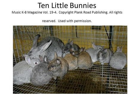 Ten Little Bunnies Music K-8 Magazine Vol. 19-4. Copyright Plank Road Publishing. All rights reserved. Used with permission.