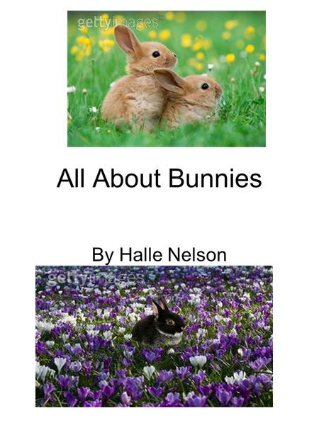 All About Bunnies By Halle Nelson. 2 Table of Contents What else do bunnies eat than carrots? pg3 Are some bunnies tan? pg4 Are some bunnies mean? pg5.