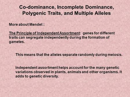 Co-dominance, Incomplete Dominance, Polygenic Traits, and Multiple Alleles More about Mendel:: The Principle of Independent Assortment: genes for different.