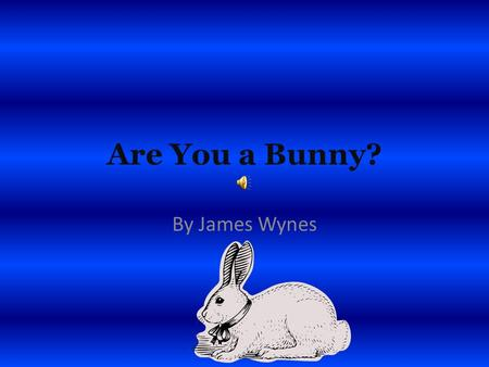 Are You a Bunny? By James Wynes Are you a bunny? If you are you have black, brown, white or a mixture of colors. You are 24 inches long and 12 pounds.