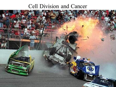 Cell Division and Cancer. CB 5.25 Genes are the parts of DNA that contain information. Protein.