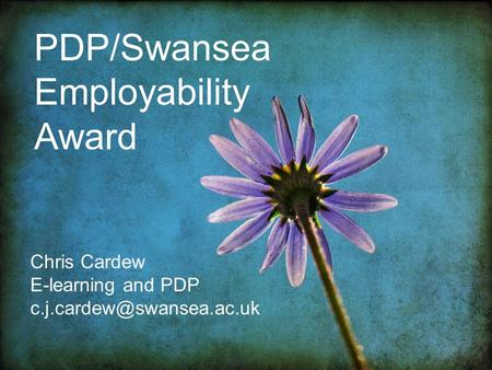 PDP/Swansea Employability Award Chris Cardew E-learning and PDP