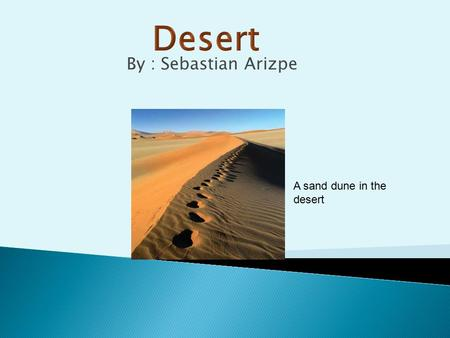 By : Sebastian Arizpe A sand dune in the desert Less than 50 centimeters of rain a year Very dry Very hot Little plant and animal life The desert.