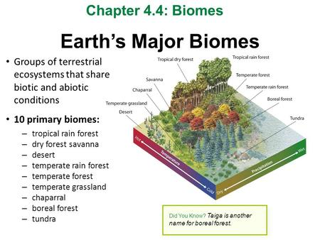Earth's Major Biomes Chapter 4.4: Biomes