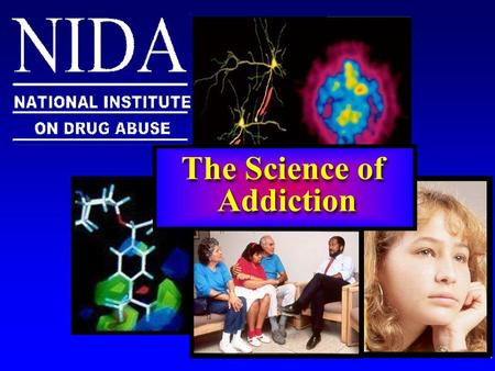 The Science of Addiction. Homelessness Crime Violence Homelessness Crime Violence Neurotoxicity AIDS, Cancer Mental illness Neurotoxicity AIDS, Cancer.