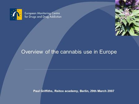 Overview of the cannabis use in Europe Paul Griffiths, Reitox academy, Berlin, 29th March 2007.