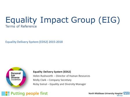 Equality Impact Group (EIG) Terms of Reference Equality Delivery System (EDS2) 2015-2018 Equality Delivery System (EDS2) Helen Rushworth – Director of.
