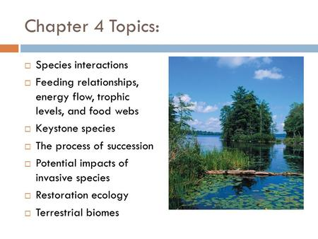 Chapter 4 Topics:  Species interactions  Feeding relationships, energy flow, trophic levels, and food webs  Keystone species  The process of succession.
