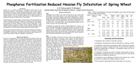 Phosphorus Fertilization Reduced Hessian Fly Infestation of Spring Wheat S. E. Petrie and K. E. Rhinhart Columbia Basin Agricultural Research Center, Oregon.