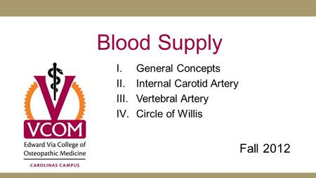 Blood Supply Fall 2012 General Concepts Internal Carotid Artery