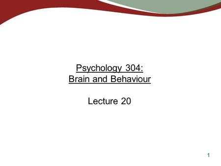 1 Psychology 304: Brain and Behaviour Lecture 20.