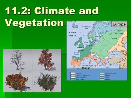 11.2: Climate and Vegetation. Factors that affect climate:  Wind  Latitude  Mountain barriers  Ocean currents  Distance from large bodies of water.