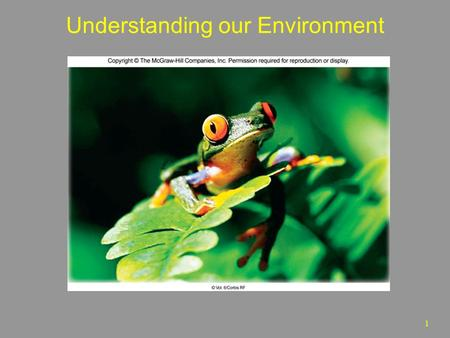 1 Understanding our Environment. 2 Introduction Environment-  Conditions that surround an organism or group(s) of organisms  Complex of social or cultural.