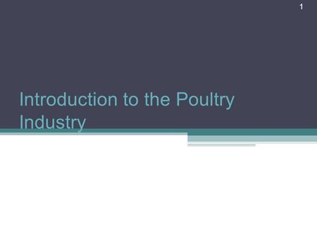 1 Introduction to the Poultry Industry. What is Poultry? Poultry is a term for domesticated fowl, particularly focusing on the species valued for their.