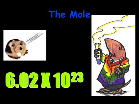 The Mole 6.02 X 10 23 STOICHIOMETRYSTOICHIOMETRY - the study of the quantitative aspects of chemical reactions.