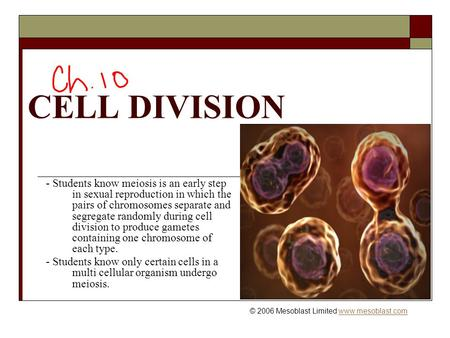 CELL DIVISION © 2006 Mesoblast Limited www.mesoblast.comwww.mesoblast.com - Students know meiosis is an early step in sexual reproduction in which the.