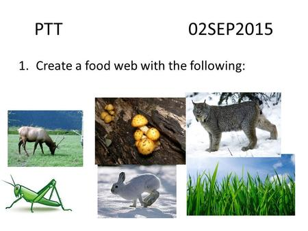 PTT 02SEP2015 1.Create a food web with the following: