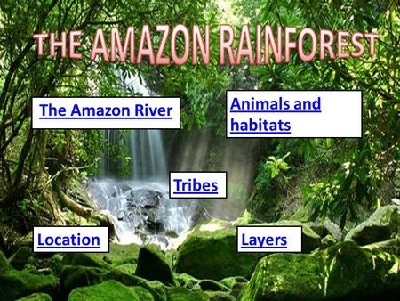 The Amazon River Tribes LocationLayers Animals and habitats.