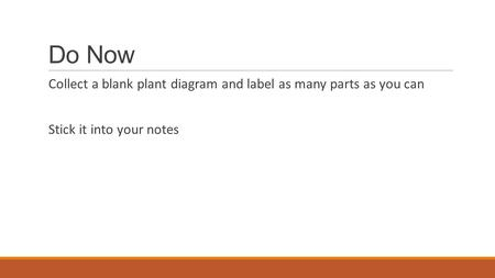 Do Now Collect a blank plant diagram and label as many parts as you can Stick it into your notes.