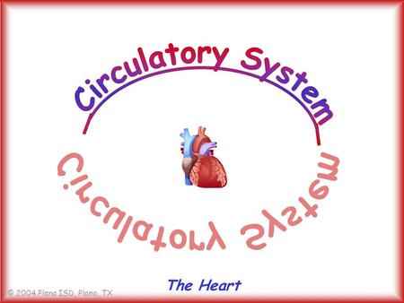 © 2004 Plano ISD, Plano, TX The Heart. © 2004 Plano ISD, Plano, TX How many times a day does your heart beat? a. over 10,000 times b. over 100,000 times.