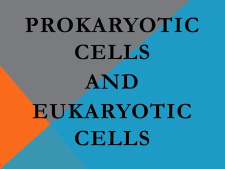 PROKARYOTIC CELLS AND EUKARYOTIC CELLS. WHAT IS A CELL? It took a long time for people to discover cells and figure out what they were all about. They.