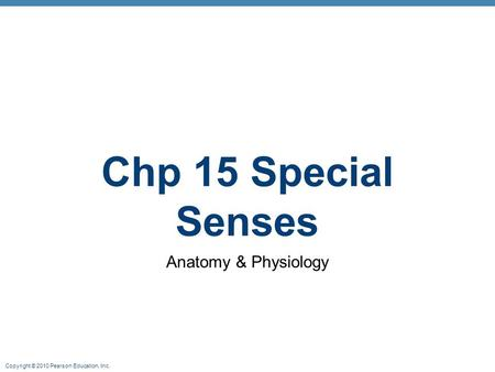 Copyright © 2010 Pearson Education, Inc. Chp 15 Special Senses <strong>Anatomy</strong> & <strong>Physiology</strong>.