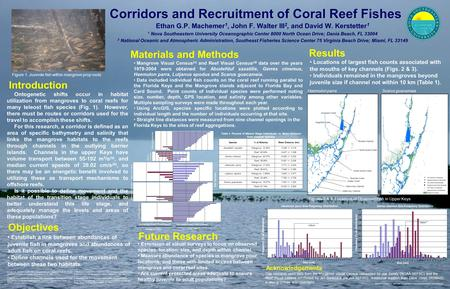 Corridors and Recruitment of Coral Reef Fishes Ethan G.P. Machemer 1, John F. Walter III 2, and David W. Kerstetter 1 1 Nova Southeastern University Oceanographic.