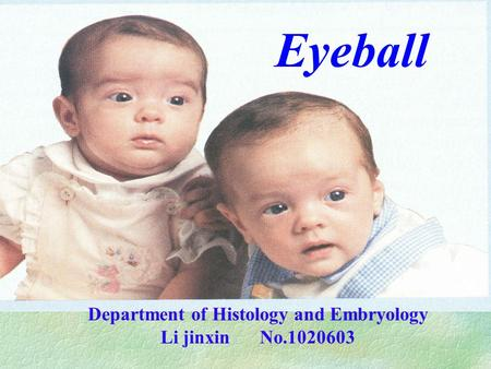 Eyeball Department of Histology and Embryology Li jinxin No.1020603.
