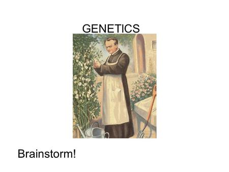 GENETICS Brainstorm!. c Mendel's studies lead him to conclude that traits are passed on as distinct units (genes).