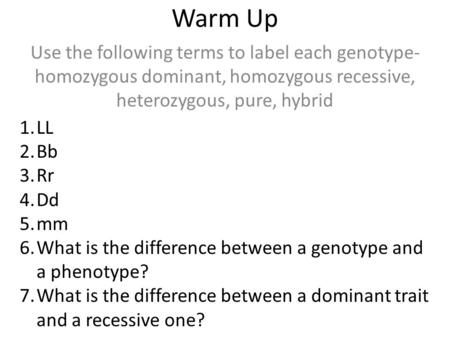 Warm Up Use the following terms to label each genotype- homozygous dominant, homozygous recessive, heterozygous, pure, hybrid 1.LL 2.Bb 3.Rr 4.Dd 5.mm.