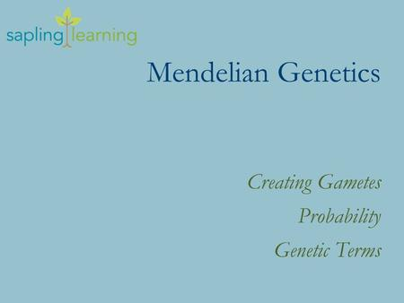 Mendelian Genetics Creating Gametes Probability Genetic Terms.