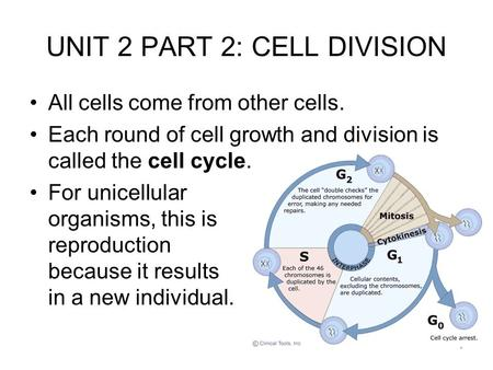 1 UNIT 2 PART 2: CELL DIVISION All cells come from other cells. Each round of cell growth and division is called the cell cycle. For unicellular organisms,