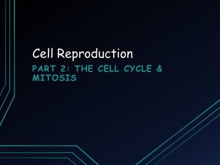 Cell Reproduction PART 2: THE CELL CYCLE & MITOSIS.