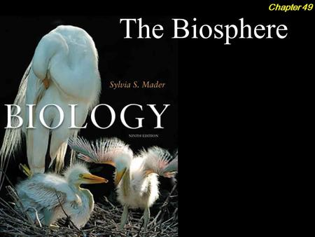 The Biosphere Chapter 49. The Biosphere 2Outline Climate and the Biosphere  Solar Radiation  Global Wind Circulation Terrestrial Ecosystems  Tundra.