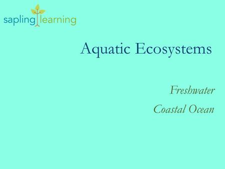 Aquatic Ecosystems Freshwater Coastal Ocean. Learning Objectives Describe the conditions of the different aquatic biomes Explain plant and animal adaptations.