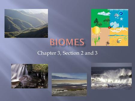 Chapter 3, Section 2 and 3.  Biome is a large group of ecosystems that share the same type of climate community.  Marine ecosystems  Terrestrial ecosystems.