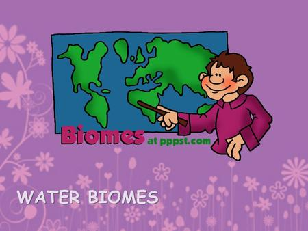 WATER BIOMES. Aquatic Ecosystems are grouped instead by: –Water salinity –Depth –If the water is moving or standing.