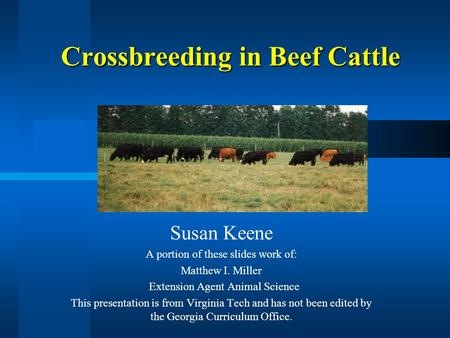Crossbreeding in Beef Cattle Susan Keene A portion of these slides work of: Matthew I. Miller Extension Agent Animal Science This presentation is from.