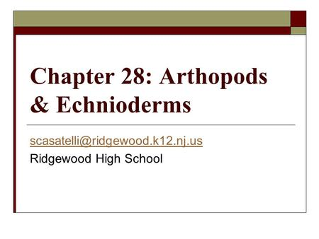 Chapter 28: Arthopods & Echnioderms Ridgewood High School.
